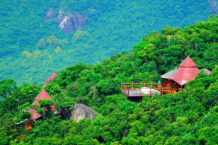 三亚热带天堂森林公园